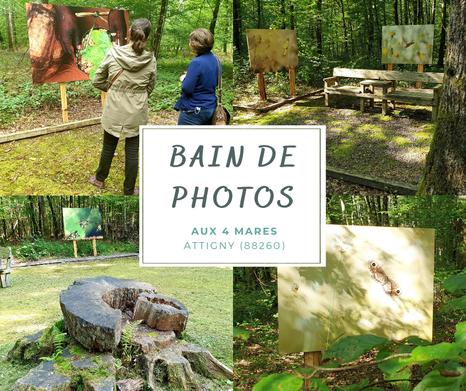 BAIN DE PHOTO